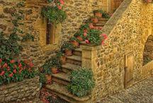Secret Garden / Gardening / by Amy Shoemaker