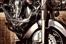 Vehicular homicide / dream beasts