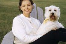 Beautiful Dog Owners / Beautiful Dog Owners