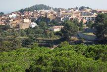Riudecanyes / Riudecanyes és una vila situada al centre de la comarca del Baix Camp, als peus de la serra de l'Argentera. Existeixen tres elements que donen singularitat a la vila: els carrers, el castell i l'embassament. Els carrers porten els noms dels dies de la setmana i no ha estat fins fa ben poc que la llista s'ha hagut d'ampliar amb noves referències. El castell-monestir de Sant Miquel d'Escornalbou, enturonat en un dels punts més alts del terme, és un lloc d'obligada visita turística.