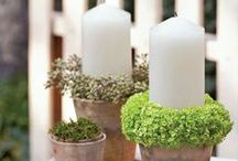 Garden and Yard Decor / Unique Garden Décor that blends in your Home all year long!