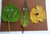 Herfst / Hersft, vallende bladeren, regen, mooie kleuren, genieten maar!