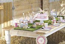 Pferde Geburtstagsparty / Wir haben tolles Partygeschirr, Dekorationen, Torten, Bastel- und Spielideen für Eure Pferde oder Pony Geburtstagsparty für Euch zusammen gestellt.