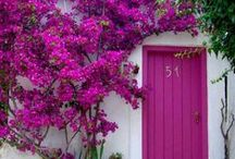 Fantastic Feature Doors / Here at doorhandles.com.au we LOVE stunning, bold front doors! They add such a lovely, welcoming feel to any home. These are some of our favourites.  #frontdoor #entryway #featuredoors #bold