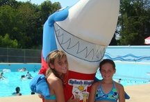 Smiley the Shark / Smiley the Shark is Splash Kingdom's happy mascot who visits the park often and loves to give hugs and high fives.