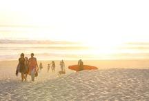 La plage ... / La plage ... Mon inspiration quotidienne ... Son énergie, ses lumières, ses coquillages ... Ces photos m'appartiennent et ne sont pas libres de droit. Merci donc de bien vouloir mettre mon lien lors de toute utilisation ... http://sunrise.abeachylife.com/