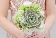 Echeveria   Floral Design Inspiration / Check it out! All kinds of floral decorations where Echeveria is used.