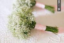 Baby's Breath - Gypsophila   Floral Design Inspiration