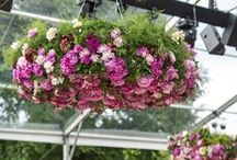 Hanging Floral Arrangements / One of 2015's floral wedding trends: hanging floral decorations!