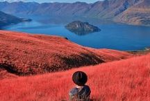 New Zealand Travel / Travel guides, tips and inspiration for visiting New Zealand   #NewZealand