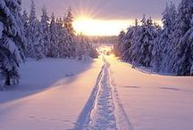 Finland Travel / Travel guides, tips and inspiration for visiting Finland   #Finland #Lapland
