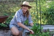 Great Garden Articles / Here's some of the articles that I have written on my passion for gardening...Enjoy !!