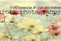 Fotografie / Bilder oder Blickwinkel die mir gut gefallen.