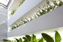 green living / Greenwalls and Vertical Garden Walls