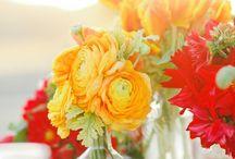 {BN Seasons} Summer Wedding / Sunshine & Romance are in the air...