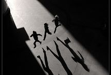 Shadows#reflection#live#nature