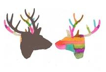 illustration / by Bárbara Villalobos