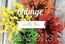 Garden Inspiration  / als-gardencenter.com