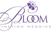 Bloom Destination Weddings, Worldwide / by VeilTV