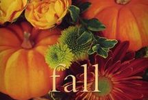 "-:- Leaf it to Fall -:- / The place for your Fall ideas. Holidays, decor, gifts, scenery, tips, recipes, smells, clothes…Let's see what your fall  is like… Make sure they link to the recipe or pattern.  WANT TO BE INVITED TO THE BOARD? Just comment on my pins. Use edit & add friends to the board. Only pin 5 pins at a time, then pin often! Keep all pins rated ""g"" & no nudity or spam.  Too many notifications? Change this by going to the Settings option (part of the menu under your name). Happy Pinning!"