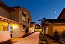 Tuscany Village / Sonoma State University has been ranked one of the top 25 best college dorms in the nation. Tuscany Village is comprised of house-style dorms that accommodate six people. Each Tuscany dorm has two single bedrooms and two double bedrooms. Houses include four bathrooms, a shared living room, kitchen and a sliding glass door with a patio. / by Sonoma State University