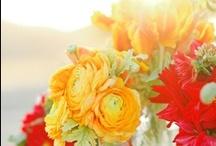 flowers:)