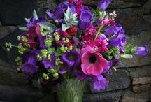 Fabulous Florists and Designers / See what our member florists are up to and how they are using the latest cut flowers!