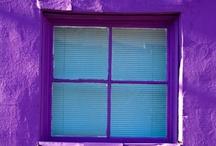 Purple / by Penelope Pepe