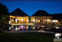 Lounge & Pool Area / Ivory Tree Game Lodge has a relaxing pool area and for those of you who like to sit back with with a book then the lounge is the ideal sitting area.
