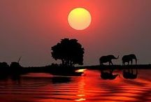Sunrises / Sunsets / by Shailendra Tokas