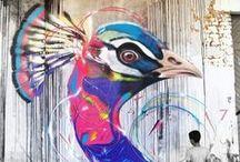 Street Art / by Shailendra Tokas