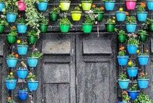 Doors - Amazing They Are! / by Shailendra Tokas