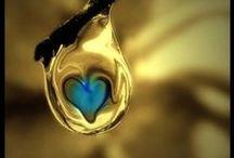 od srdíčka x From the heart