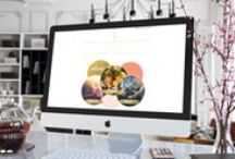 Hamptons Designs / Graphic Designs and Branding for the photographer