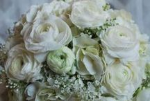 White Wedding Bouquets / This is the board to be looking at if you want to keep an elegant and traditional look of all white.