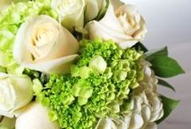 Green Wedding Bouquets / For all of you with a green thumb out there this board is for bouquets with lots of green flowers.