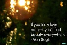 EcoInspiration / Inspirational quotes and ideas about the environment.