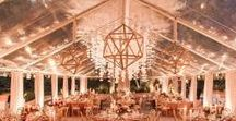 A Signature Structure / Event Design, Furniture, Rentals, and Inspiration