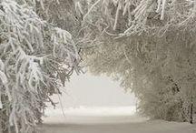- Let it snow -