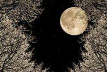 - Moon -