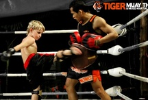 Tykes at Tiger / Kids are more than welcome at Tiger Muay Thai & MMA! In fact, we are certain your family will never forget a holiday at our camp. It's incredible how much you can bond over such a unique and interesting experience. Our trainers started training at the age of five or six and are well-versed when it comes to working with little ones! Feel free to enquire about your family holiday and any concerns you may have. Fighting can be fun (and gentle!). www.tigermuaythai.com / by Tiger Muay Thai