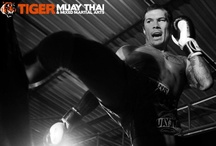 Tiger's Muay Thai Training / When it comes to Muay Thai training, we are hands-down the best training camp in the world! With over 30 current and former world Muay Thai champions, we teach you authentic Muay Thai with an eye for tradition and culture. Classes are divided into beginner, intermediate, advanced and pro with private sessions always available. Learn the Science of the Eight Limbs from the masters! www.tigermuaythai.com  / by Tiger Muay Thai