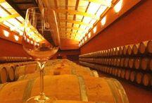Vinos y Bodegas / Nos gusta el #vino, no lo podemos evitar.  Conoce nuestras enoexperiencias en cuestión de vinos, tant de España como de todo el mundo