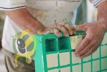Evde zeytinyağlı sabun nasıl yapılır/ / Evde Zeytinyağlı Sabun Nasıl Yapılır? Püf noktaları Nelerdir? Evimiz de organik ve katkısız sabun yapmak hiç bu kadar kolay olmamıştır. İnsanın emek vererek yaptığı sabunları kullanması ne kadar zevklidir. Yapacağımız sabunları güven ile kullanabilir dostlarınıza hediye edebilirsiniz…