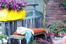 Balcony planting