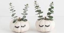 Inspiration : Déco Halloween