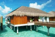 Hotels We're Excited About: 2014
