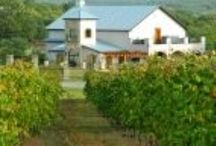 Texas Wineries / by LaSalle Hotel