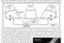 Kavionhoito / Kavionhoitoon liittyviä asioita, mm ns. valkoviivantaudista