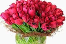 Buchete lalele / Tulips bouquets / http://www.florariamobila.ro/buchete-de-flori/buchete-lalele.html